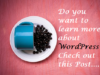 learn-more-about-wordpress
